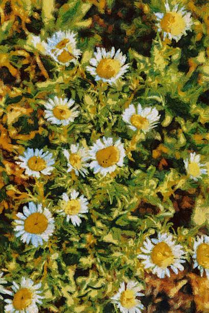 Summer daisies oil painting Van Gogh style imitation stock photo