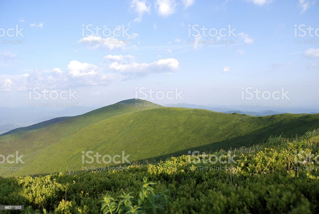 summer day in the Carpathian mountains royalty-free stock photo