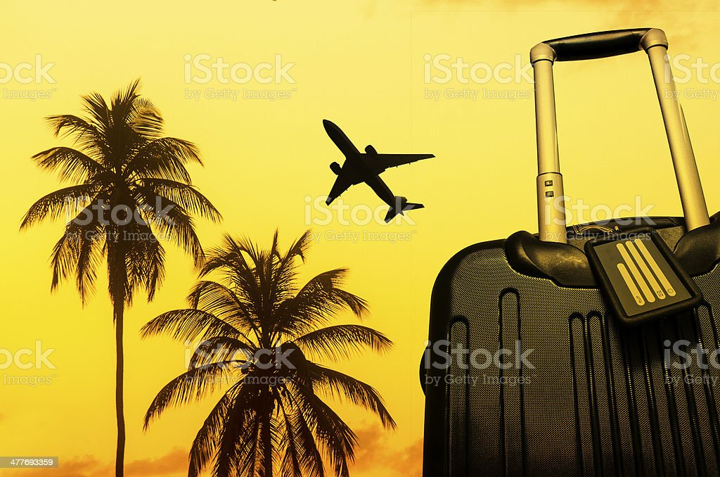 summer destination travel with palms trees and suitcase royalty-free stock photo