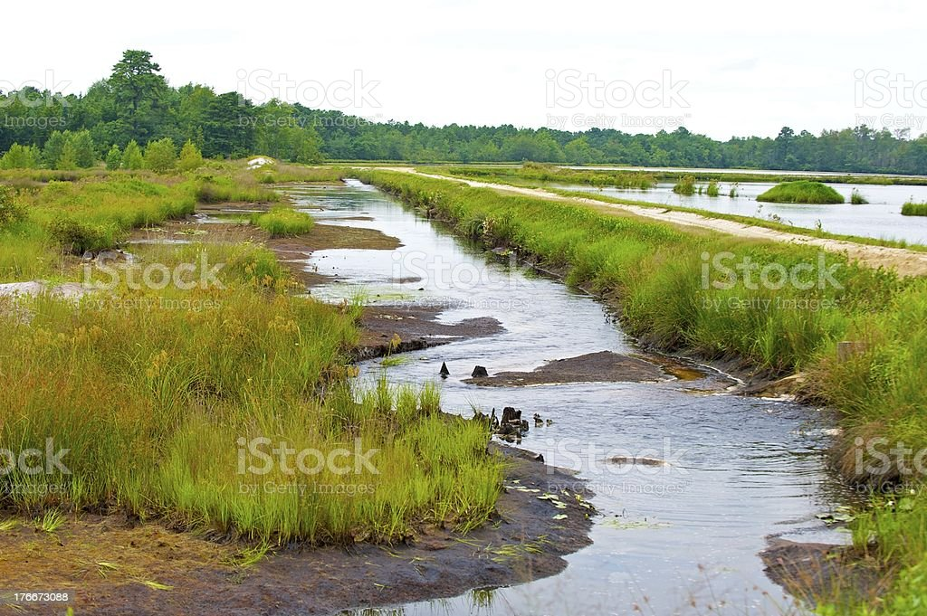 summer drought royalty-free stock photo