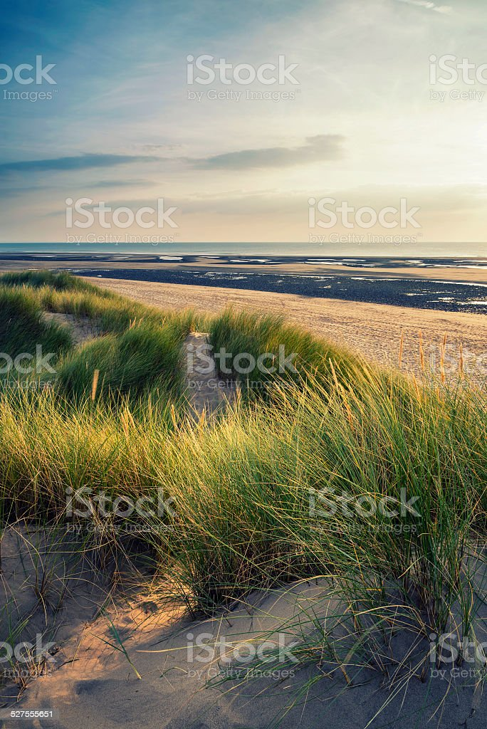 Summer evening landscape view over grassy sand dunes on beach stock photo
