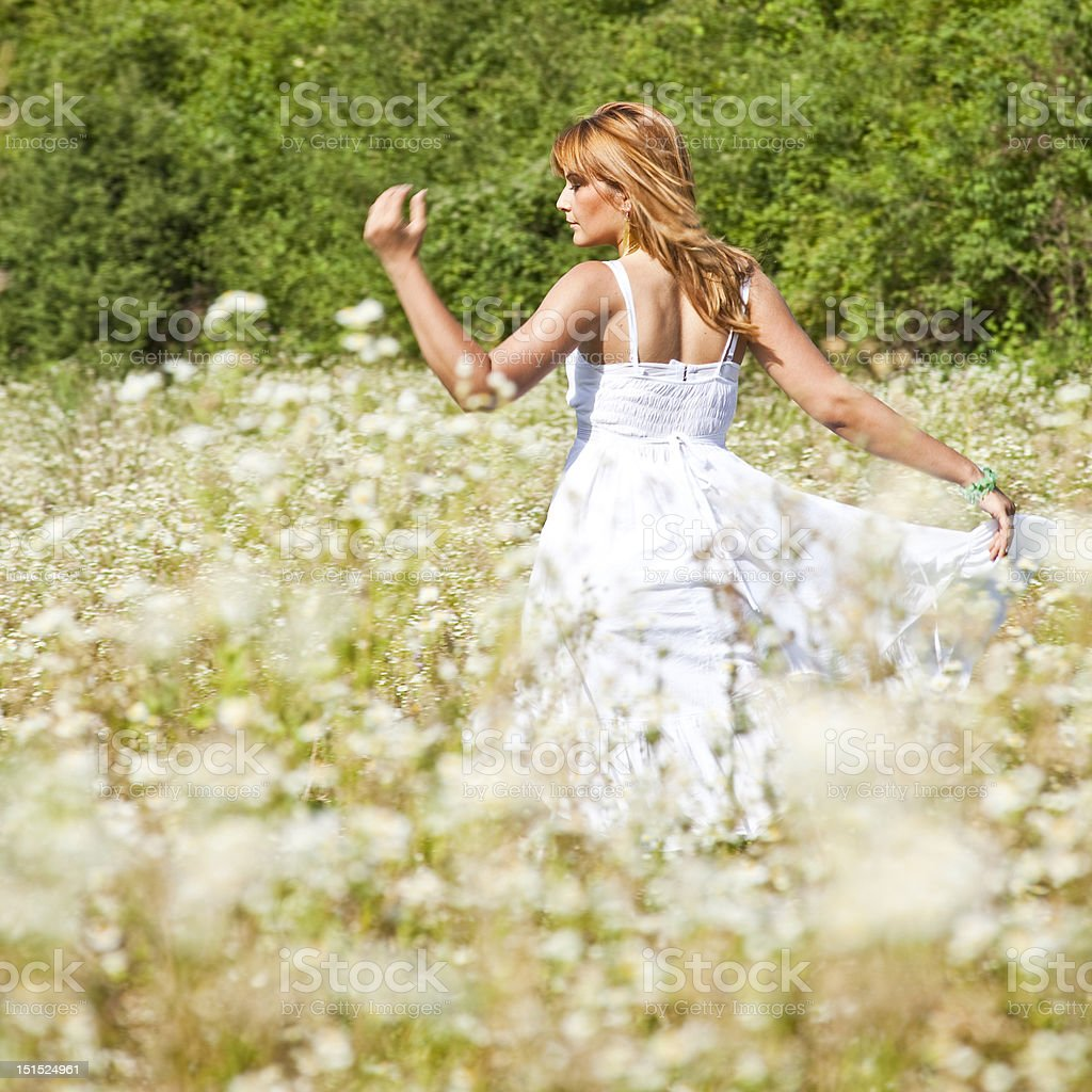 Summer Fairy royalty-free stock photo