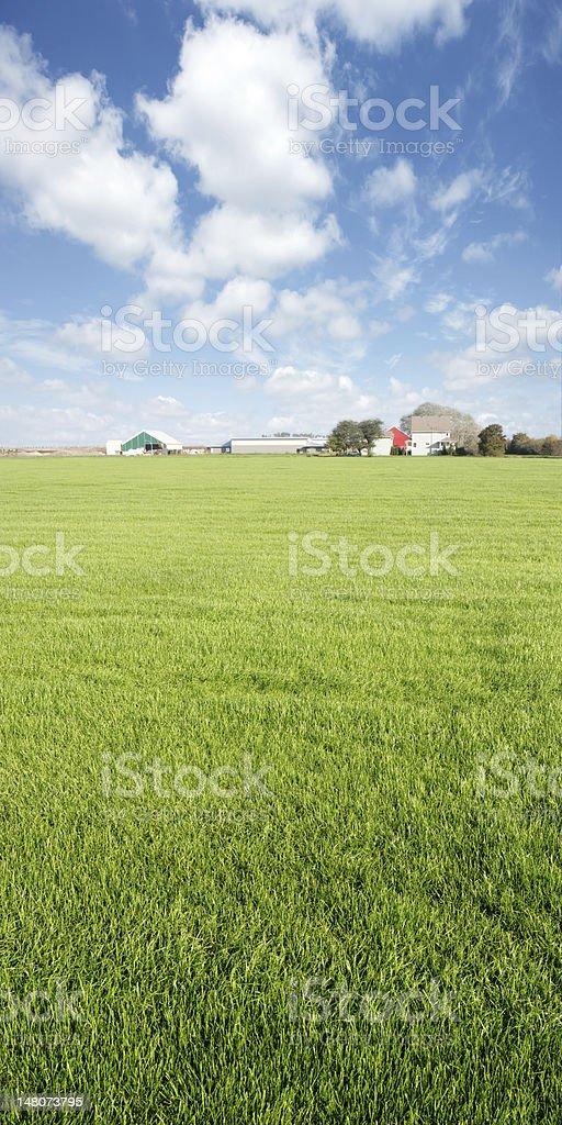 XXXL summer farm royalty-free stock photo