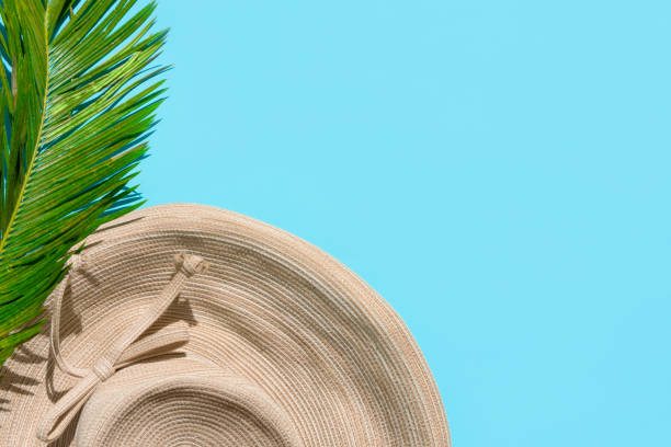 Sommer Mode tropisches Konzept. Damenfade-Strohblättrig hat grünes Palmenblatt auf mintblauem Hintergrund. Urlaub Entspannung Luxus. Kreative minimalistische Flachläche mit Kopierplatz – Foto
