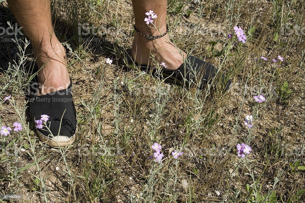 Summer feets royalty-free stock photo