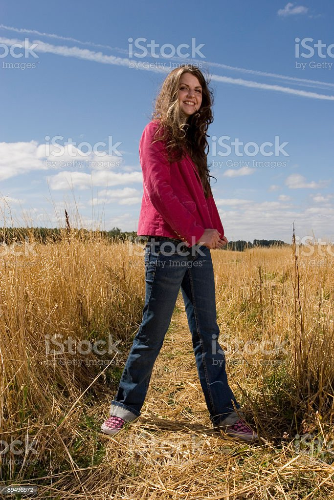 Summer Field royalty free stockfoto