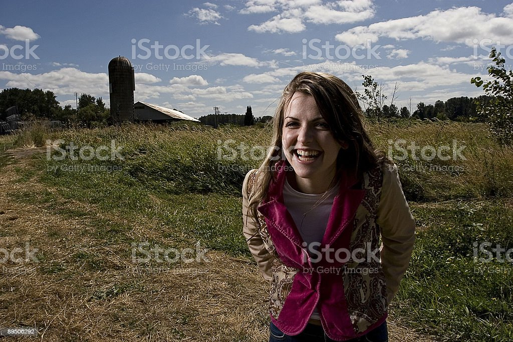 Summer Field Series royalty-free stock photo