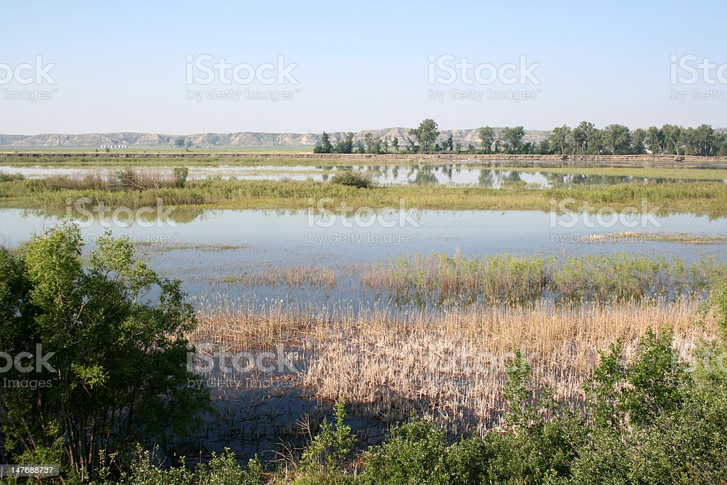 Summer Floods on the Upper Missouri River stock photo