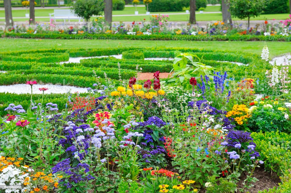 summer flower bed and  lawn stock photo