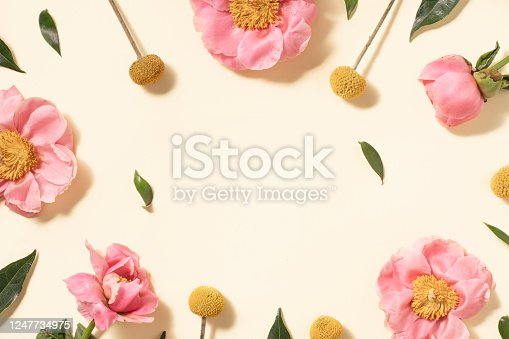 Summer flower flat lay on yellow background. Top view composition.