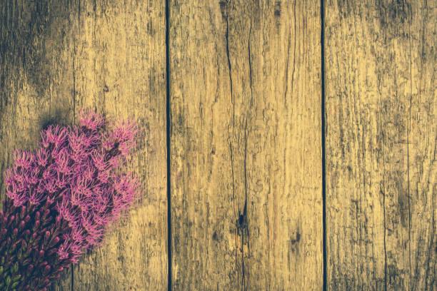 sommerblumen in lila farbe auf vintage-hintergrund, rustikalen blumenstrauß, geerntet am feld wildblumen auf holztisch, kopieren raum - herbst hochzeitseinladungen stock-fotos und bilder