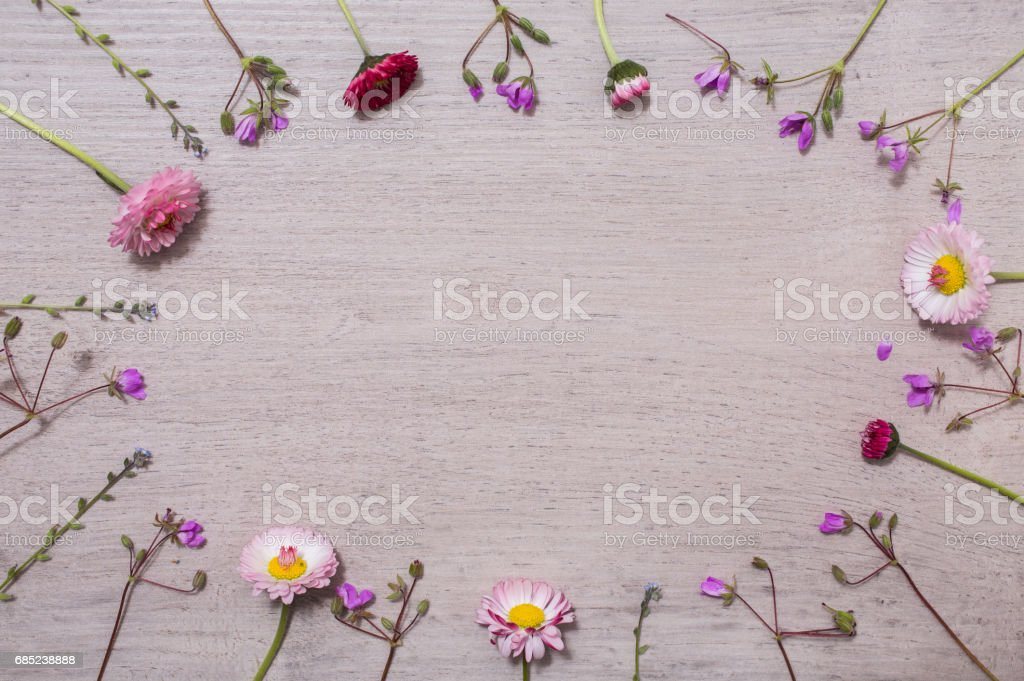 Summer flowers lie on a light background, frame with flowers, branches, leaves and petals on wooden background, flat lay, copyspace foto de stock royalty-free