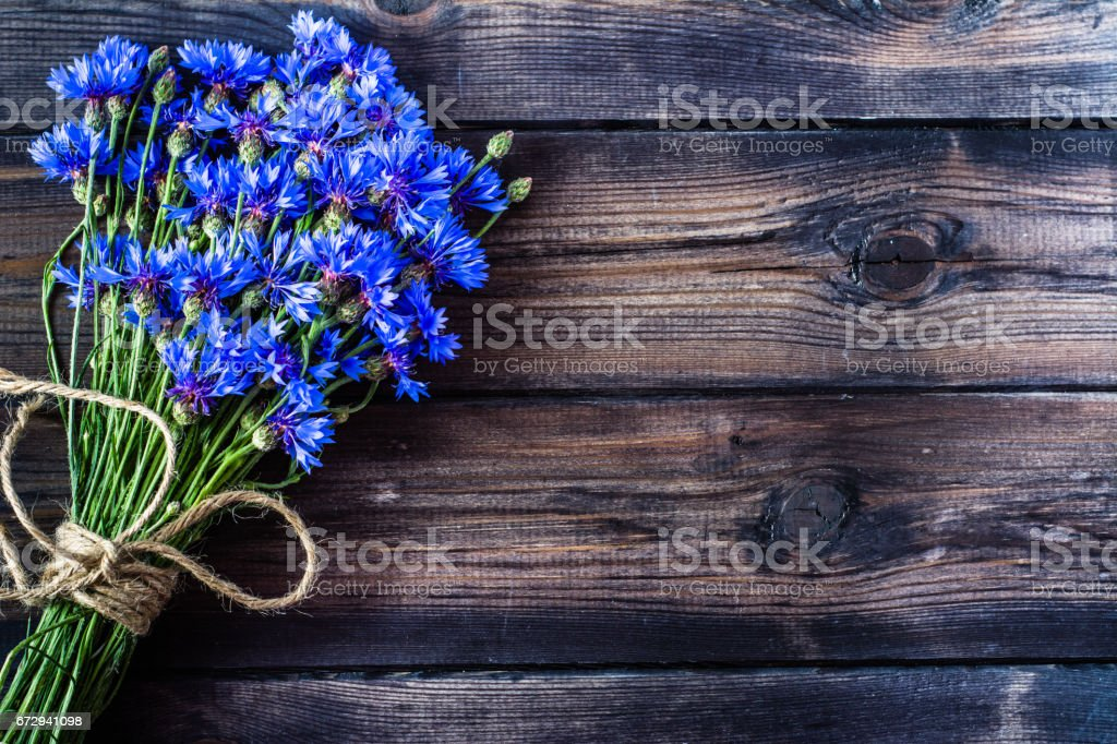 Summer flowers on wood, rustic design, copy space stock photo