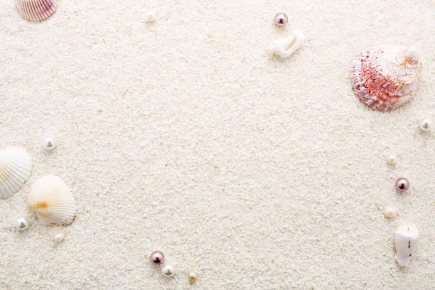 Sommer-Frame von Muscheln & Perlen am weißen Sandstrand. – Foto