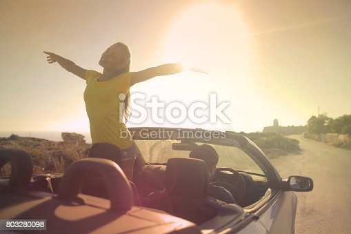 istock Summer freedom 803280098
