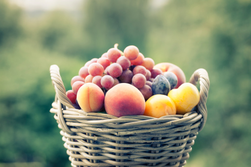 summer fruit in basket