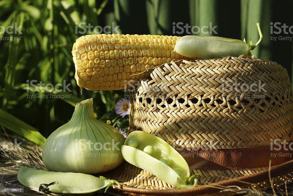 Summer Fruits Health Nutrition Vitamin Assortment royalty-free stock photo