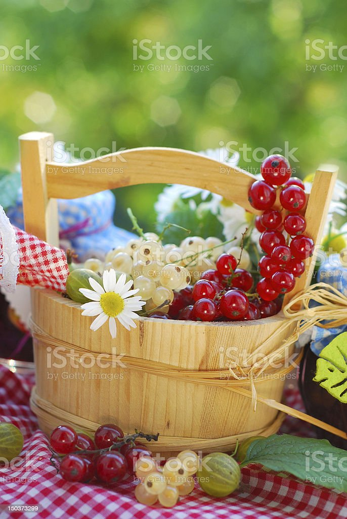 summer fruits  in the garden royalty-free stock photo