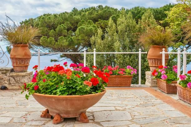 ein sommergarten am meer. blick auf die stadt auf farbenfrohe geranien in terrakotta-töpfen auf einer steinterrasse mit blick auf das mittelmeer in italien. - blumentopf groß stock-fotos und bilder