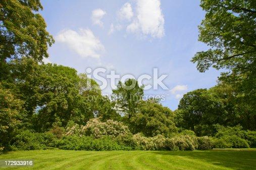 istock summer garden 172933916