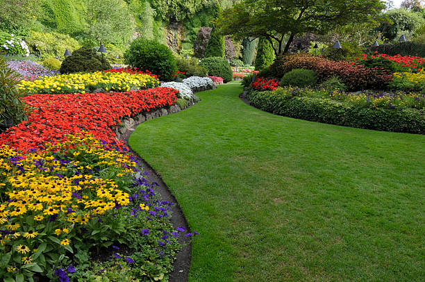 summer garden - formal garden stock photos and pictures