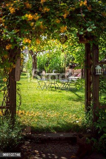 Sunny day in a summer garden through a flower gate
