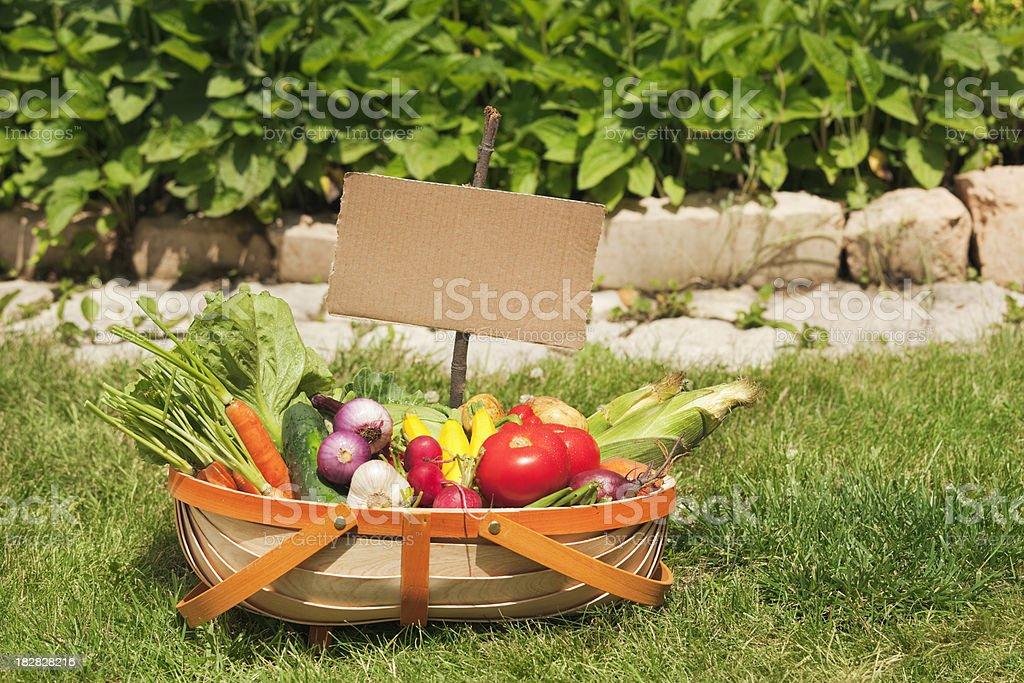 Summer Garden Vegetable Harvest in Basket with Cardboard Sign Hz royalty-free stock photo