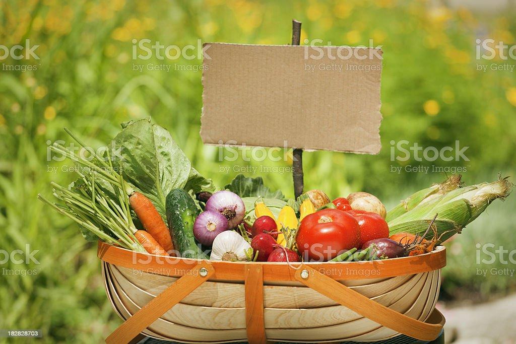 Summer Garden Vegetable Harvest in Basket with Cardboard Sign royalty-free stock photo