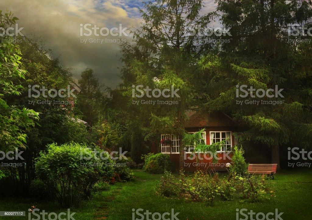 jardín de verano con pérgola en país - foto de stock