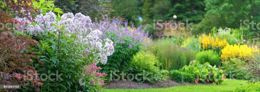 Sommer Garten – Foto