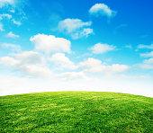 空と夏の草の芝生