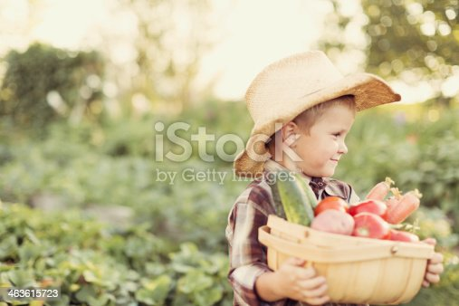 A young farmer is proud of his summer produce.