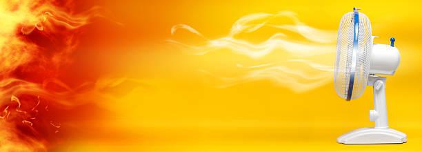 Sommer-heat – Foto
