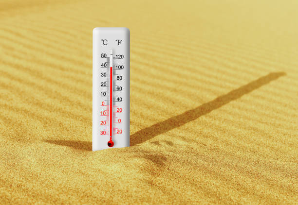 Summer heat. Thermometer in the sand shows plus 40 degrees celsius stock photo