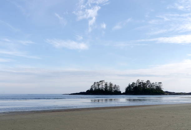 Summer hikes on north end of Chesterman beach  walking towards Middle beach, Tofino, British Columbia stock photo