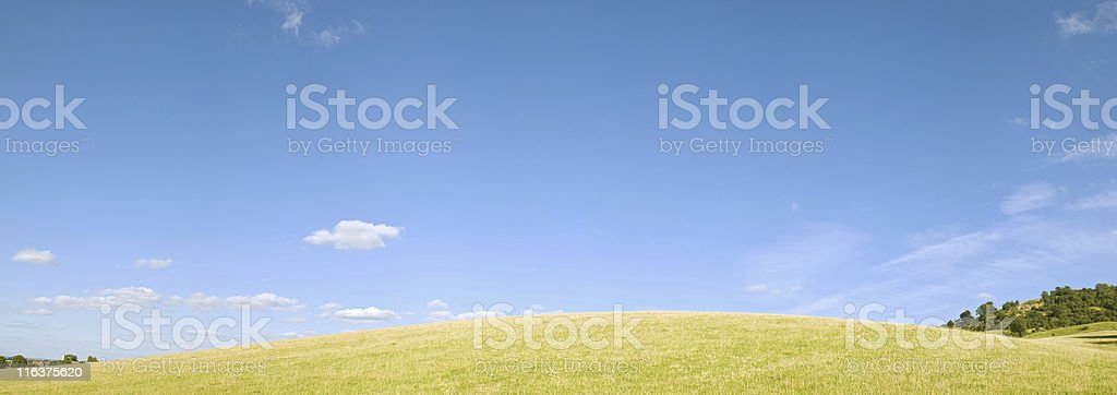 Summer hill. stock photo