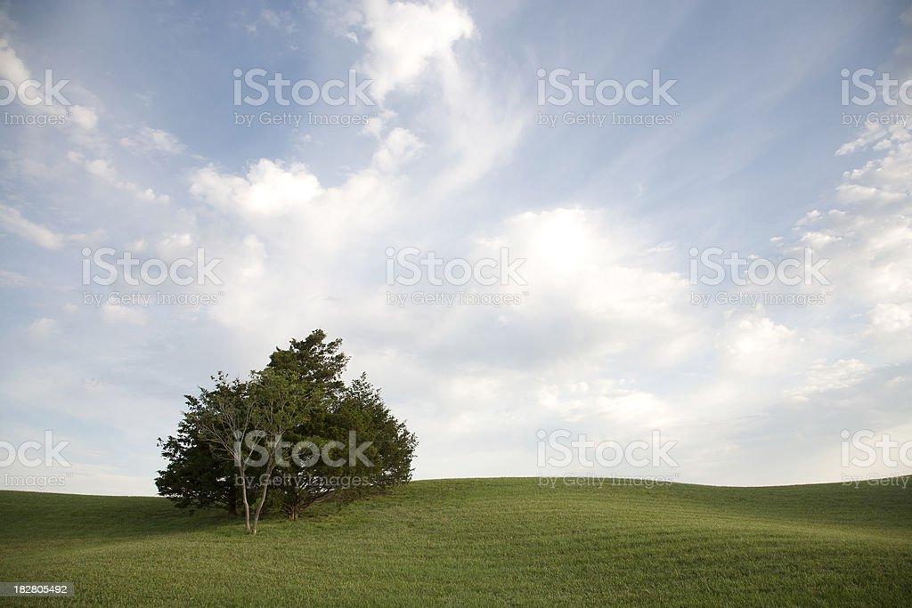 Summer Hill stock photo