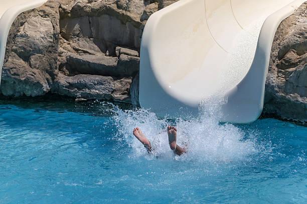 summer holiday in a waterpark - organismo aquático - fotografias e filmes do acervo