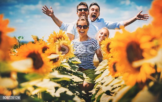 Closeup of four mid 20's people happily jumping and running through sunflower field. All laughing and looking at camera, front lit, the Sun is pretty high.