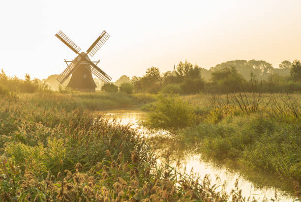 Summer in Holland stock photo