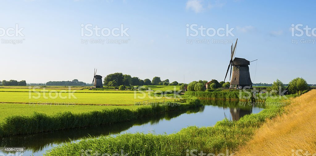 Summer in Holland royalty-free stock photo