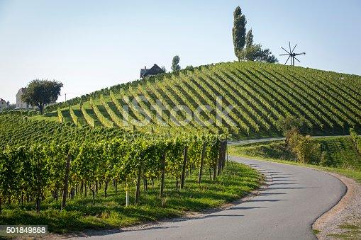 vineyard with windmill called klapotetz near spielfeld, the austrian border to slovenia.old wine growing area named südsteirische weinstrasse