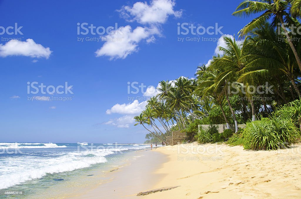 Summer in Sri Lanka stock photo