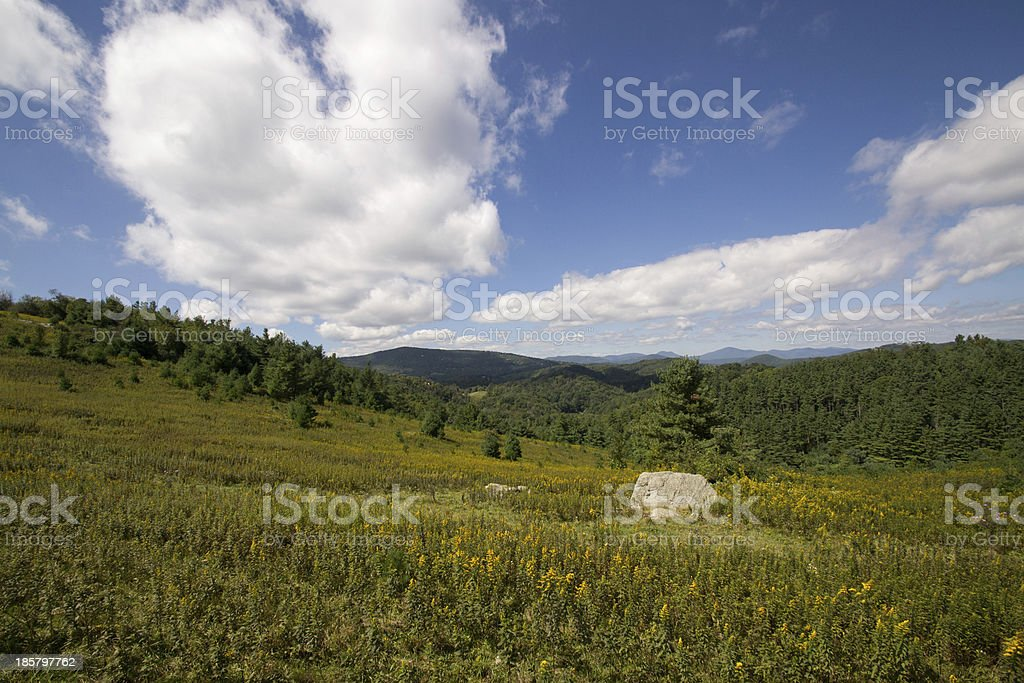 Summer in the Blue Ridge Mountains royalty-free stock photo