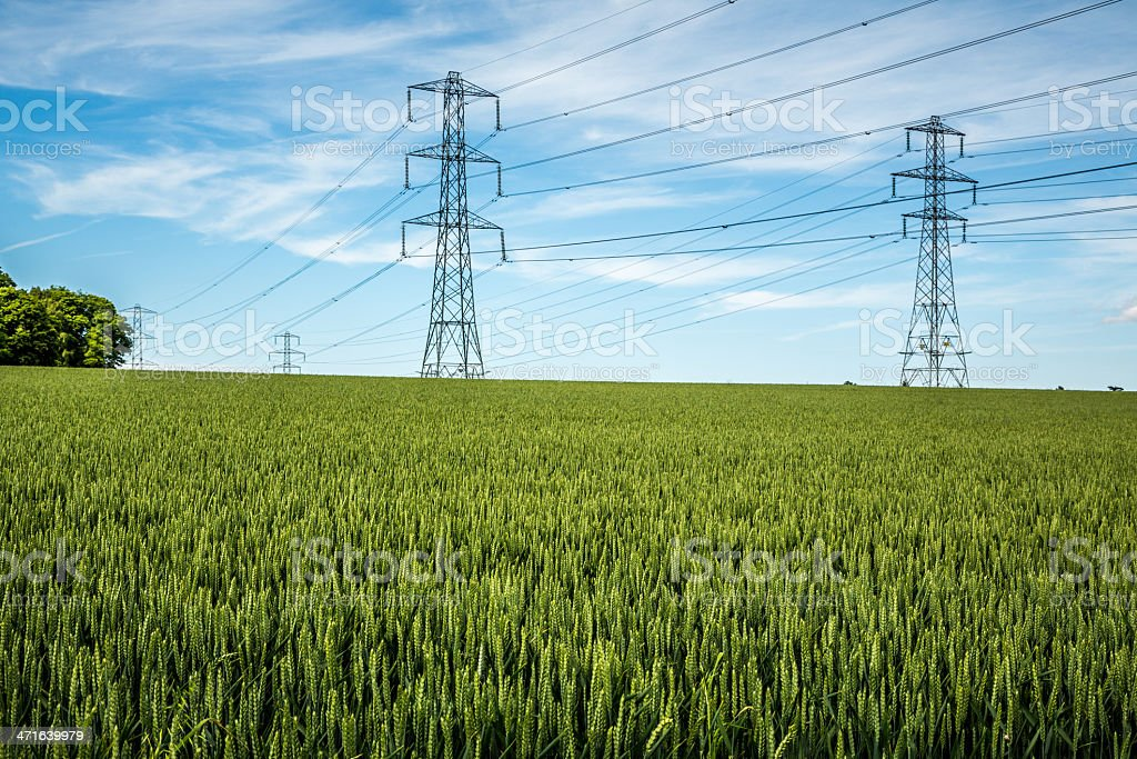 Summer in the countryside with rows of electric pylons royalty-free stock photo