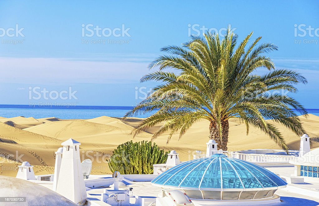 Summer in the Dunes royalty-free stock photo