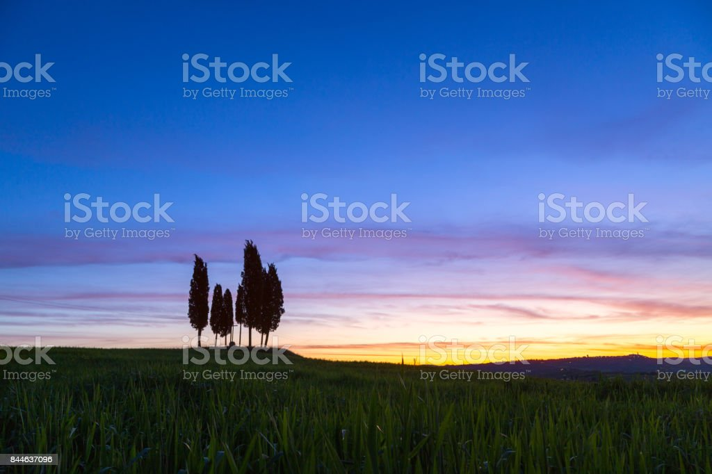 Summer in the fields of Tuscany in the sunrise stock photo