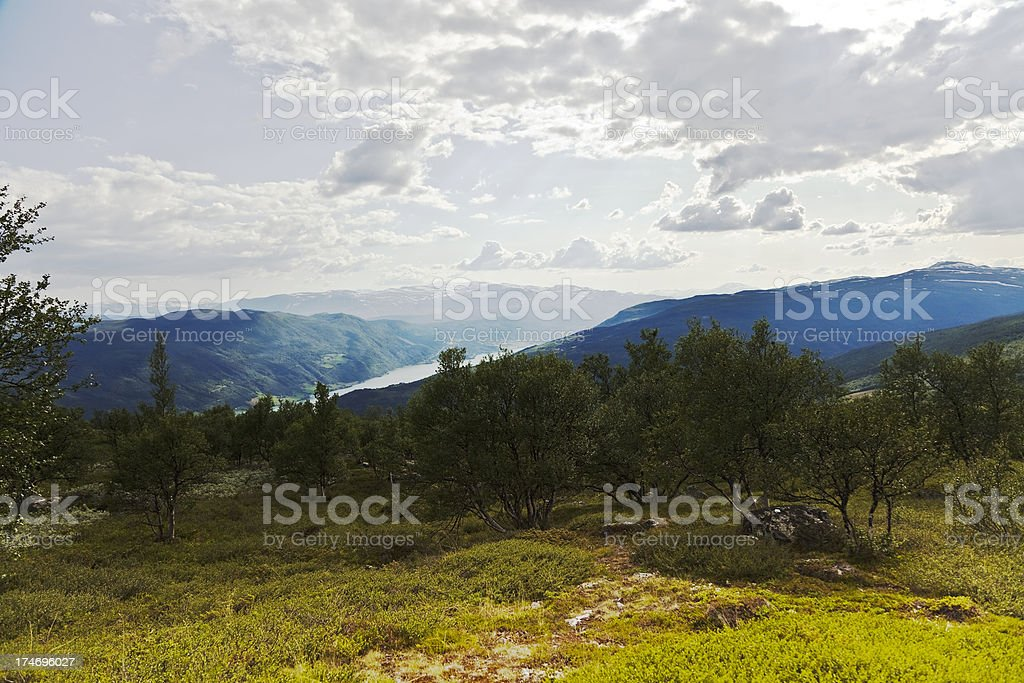Summer in the Norwegian mountains. royalty-free stock photo