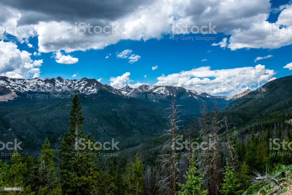 rocky mountains biotic components Is defined by the rugged rocky mountains that cut (living) and abiotic (non-living) components ecosystems of rocky teacher guide.
