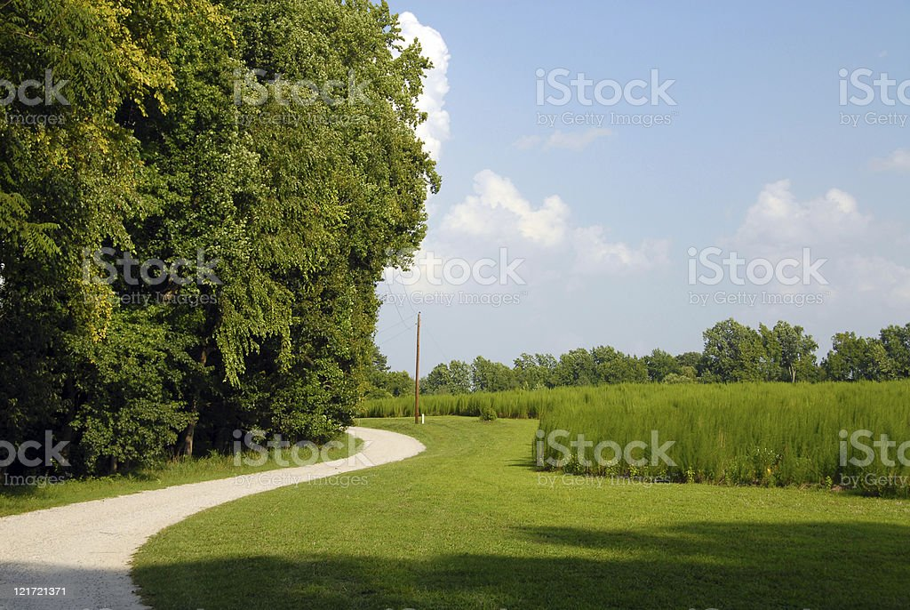 Summer is a Winding Road royalty-free stock photo